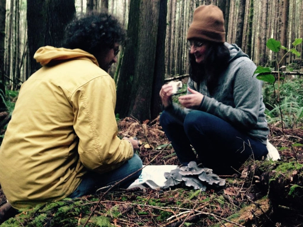 Michael and Celine sit down to identify some cool-looking shrooms.