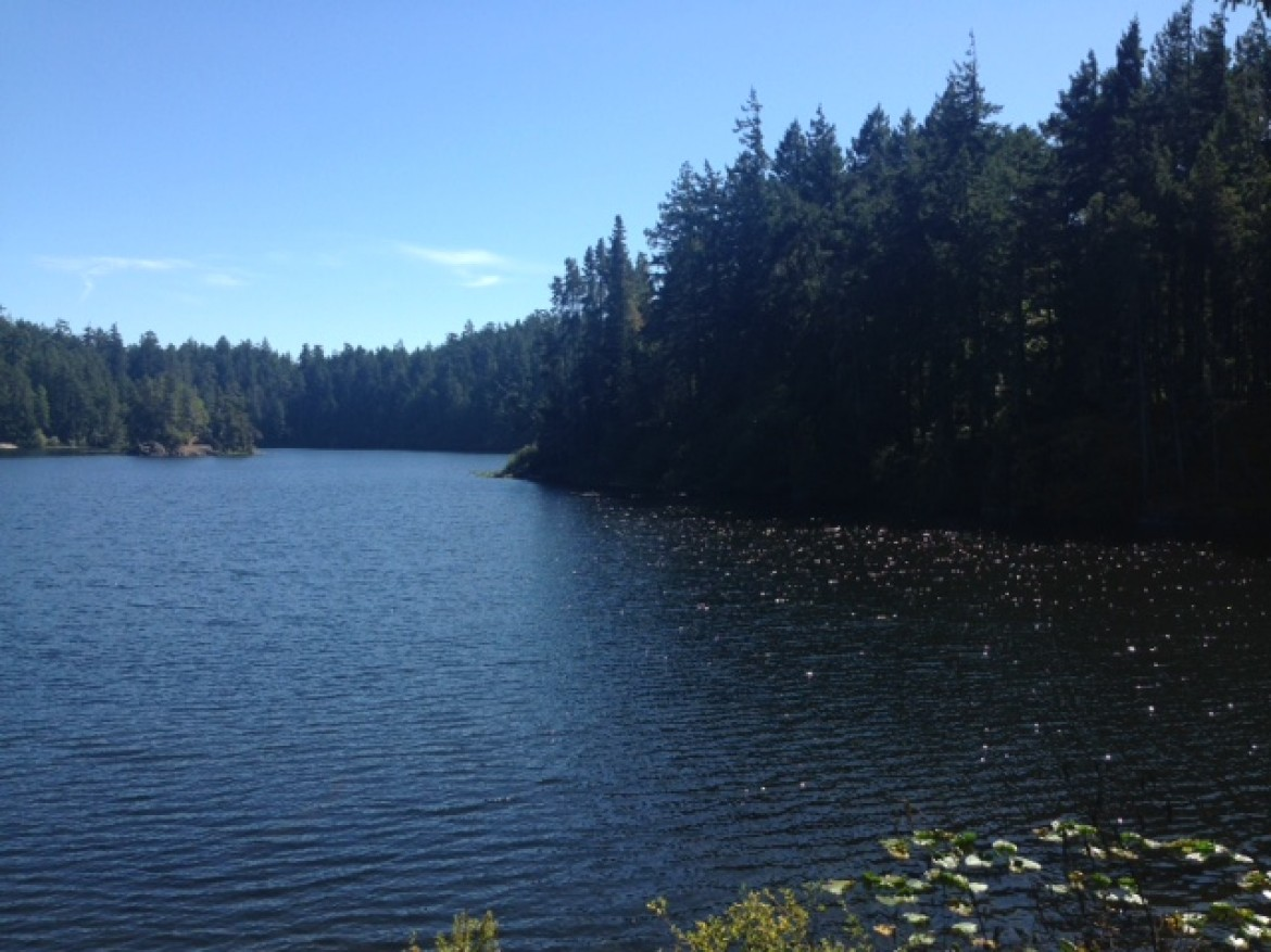 Matheson Lake: A Hidden Gem on Victoria's Outskirts